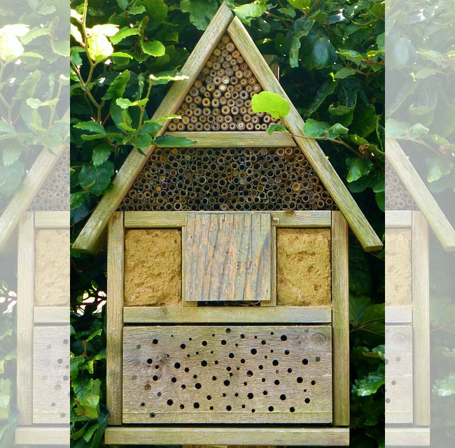 An insect hotel for the backyard
